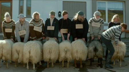 Barany. Islandzka Opowieść (4)